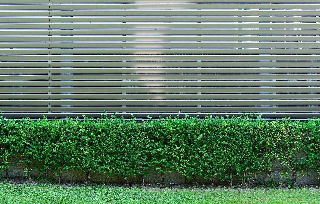 Zaune Sichtschutz Gartenzaun Holzzaun Koln Bonn Siegen
